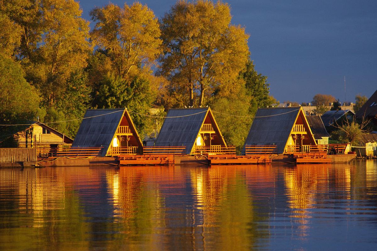 озеро селигер места отдыха фото дерева сделать сложнее